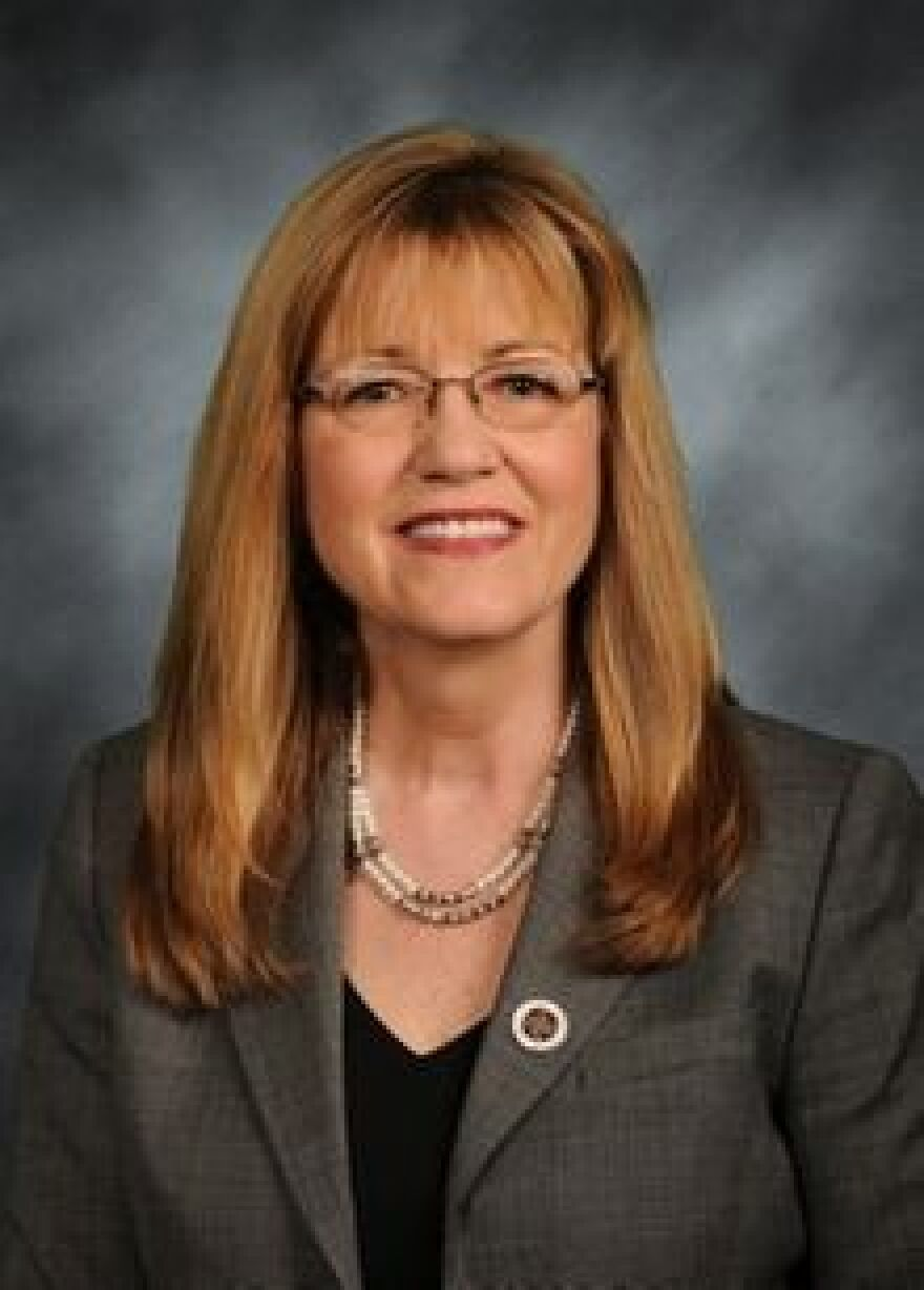 Illinois State Sen. Melinda Bush, D-Grayslake, sponsored a bill that protects women's right to reproductive health care.