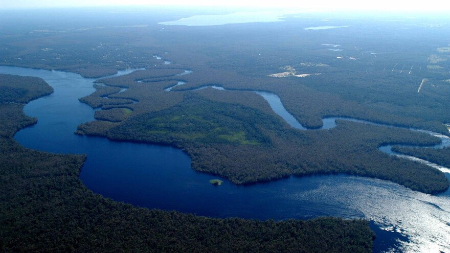 The St. Johns River.