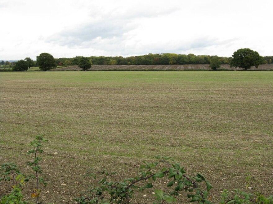 Wadborough_Farm's_fields_-_geograph.org_.uk_-_1007597.jpg