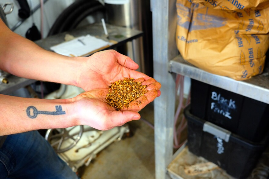 Michael Garrity, owner and brewer of Triple Dog Brewing in Havre, Mont., holds a handful of barley that he'll use to brew more beer.