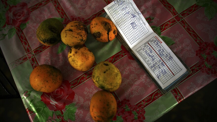 The Cruz family's government-issued ration booklet sits on the table of their home in Madruga.