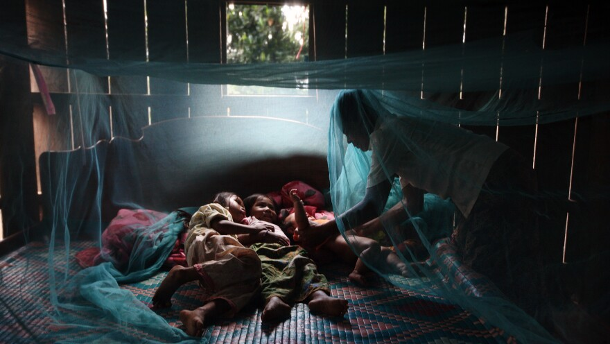 Yonta, 6, rests with her sister Montra, 3, and brother Leakhena, 4 months, under a mosquito net in the Pailin province of Cambodia — an epicenter of drug-resistant malaria.
