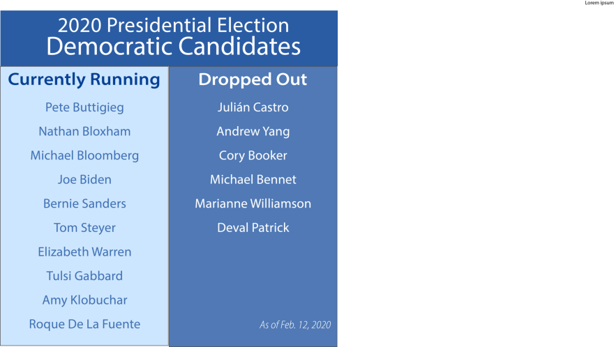 Graphic of currently running and dropped out 2020 Democratic presidential candidates.