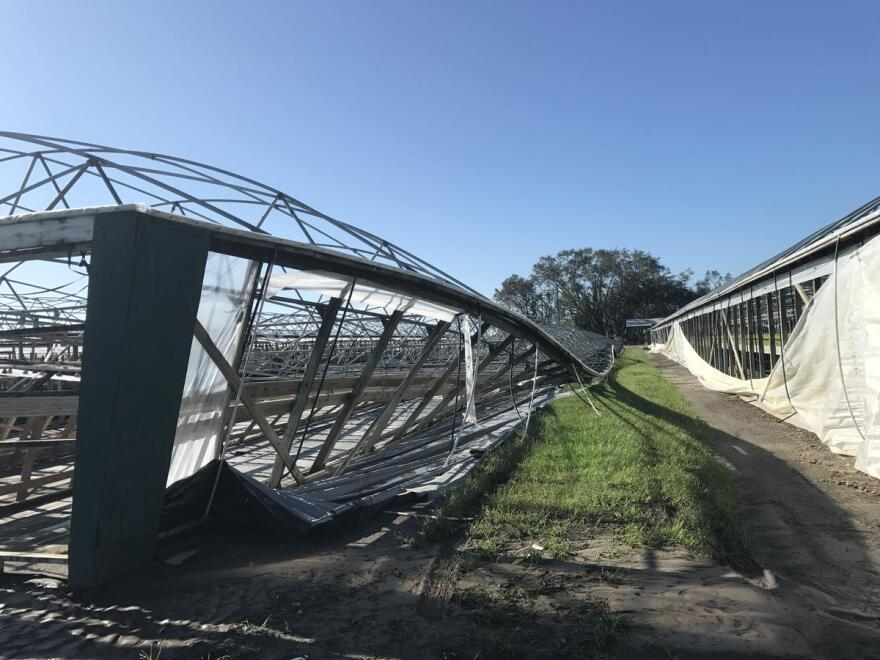 To the left, a greenhouse is twisted and collapsed.