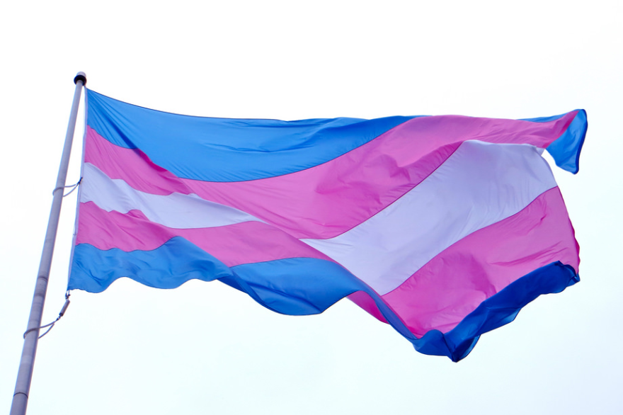 A transgender pride flag — striped with two light blue stripes, two pink stripes, and one white in the center — flies on a flag pole.