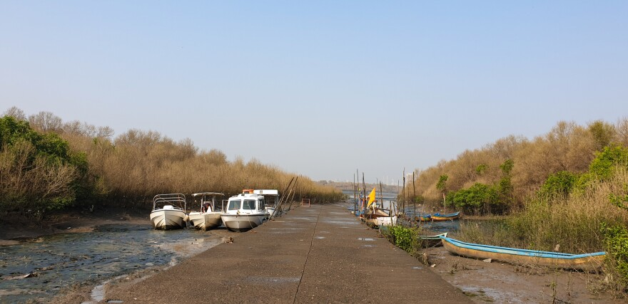 In a creek lined with mangroves in Mumbai, boats wait to take tourists to spot flamingos and other migratory birds.
