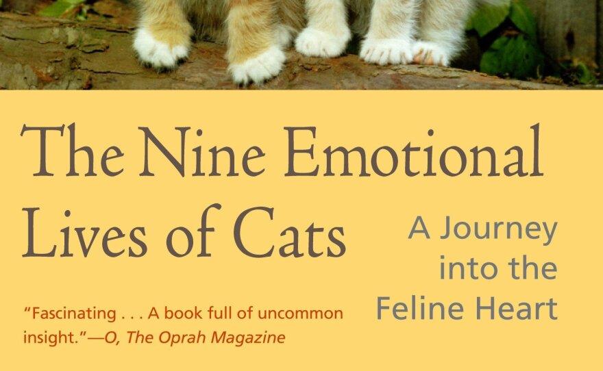 Nine-Emotional-Lives-Of_cats.jpg