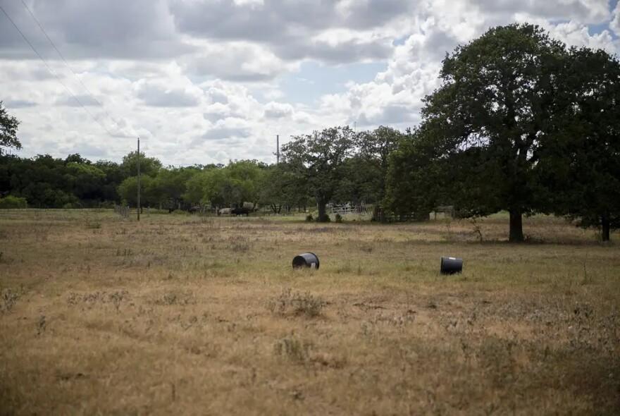 tx_drought_rancher_ag_tt_09__1_.jpg