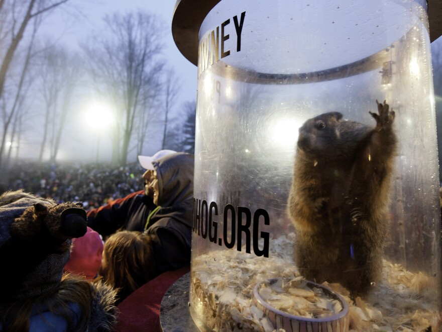 On Thursday, Punxsutawney Phil will predict whether there will be six more weeks of winter or an early spring.