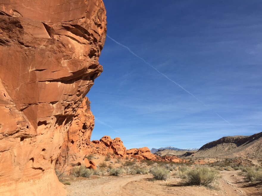 Native Americans have been traveling through the Gold Butte area for centuries, camping at ancient sites like this and gathering plants to use to make baskets and paint.
