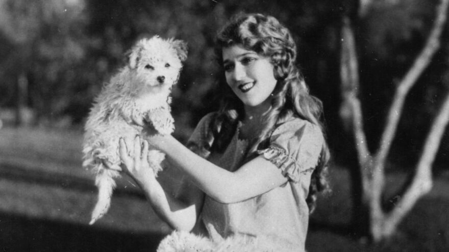 """In the 1910s and '20s, actress Mary Pickford was known as """"Blondielocks"""" for her golden, sausage-like curls."""