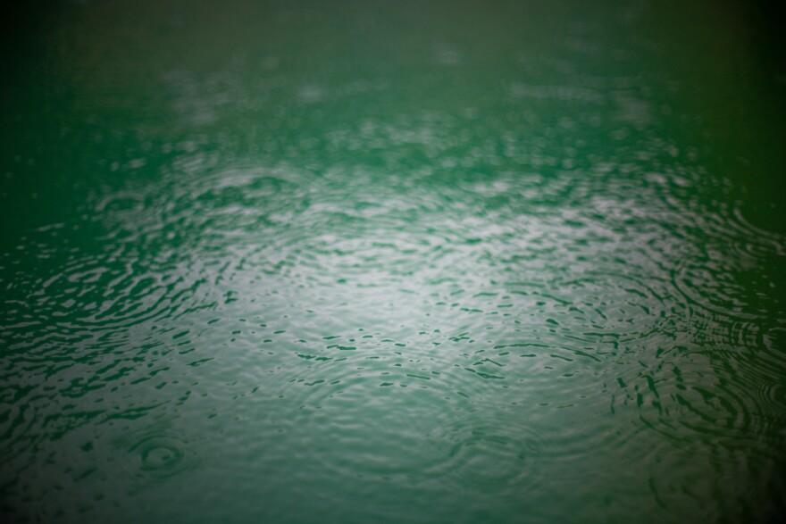 rain_on_the_water_-_By_Caleb_Miller.jpg