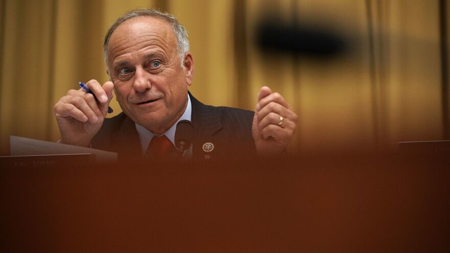 Rep. Steve King, R-Iowa, speaks during a hearing before the House Judiciary Committee on June 28 on Capitol Hill in Washington, D.C.