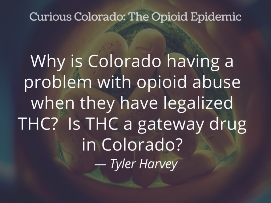"""GRAPHIC: """"Why is Colorado having a problem with opioid abuse when they have legalized THC?  Is THC a gateway drug in Colorado?"""" — Tyler Harvey"""