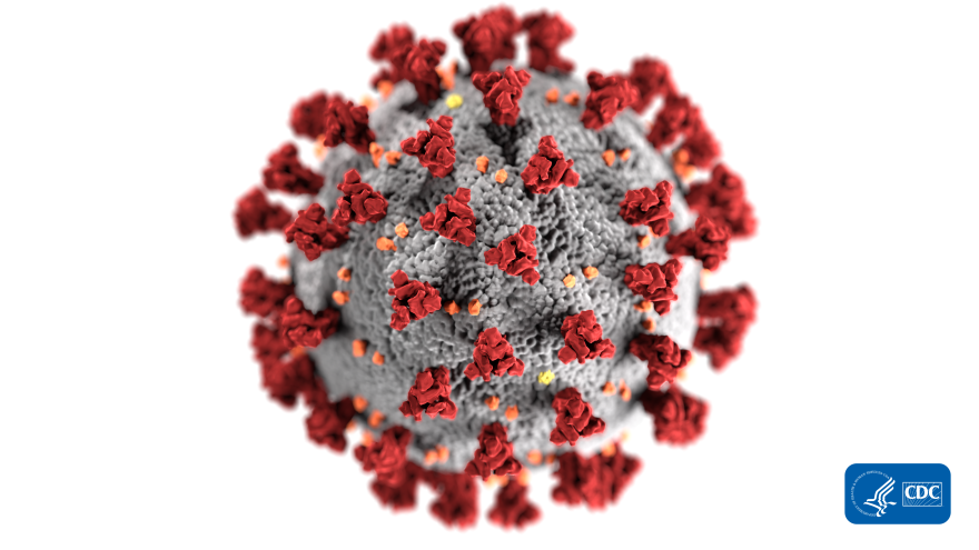 This illustration, created at the Centers for Disease Control and Prevention (CDC), reveals ultrastructural morphology exhibited by coronaviruses