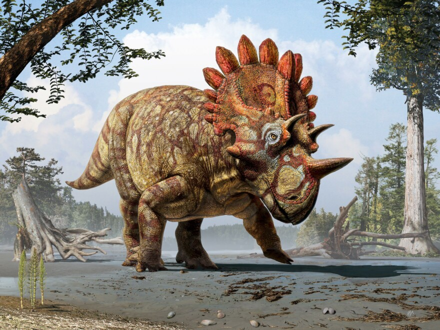 Artistic life reconstruction of the new horned dinosaur <em>Regaliceratops peterhewsi</em> in the palaeoenvironment of the Late Cretaceous ofAlberta, Canada.