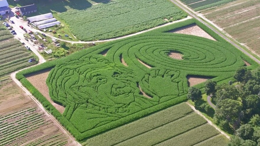 Mike's Maze from 2005 was an homage to Albert Einstein and his spiral galaxy.