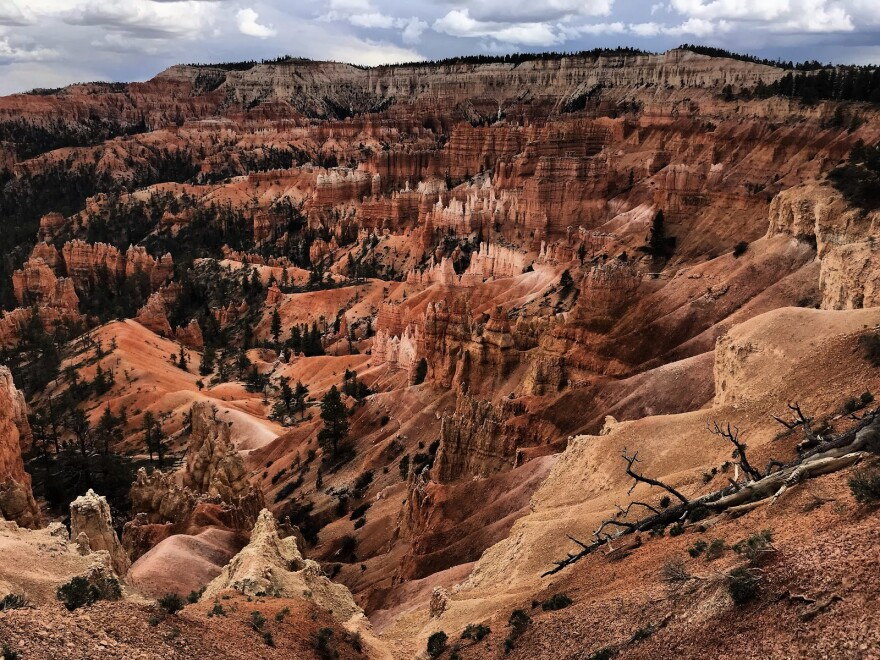 The eroded spires and red and white canyon walls of Bryce Canyon National Park.
