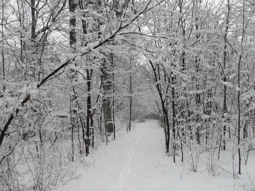 jefferson_almanac-snow_scene.jpg