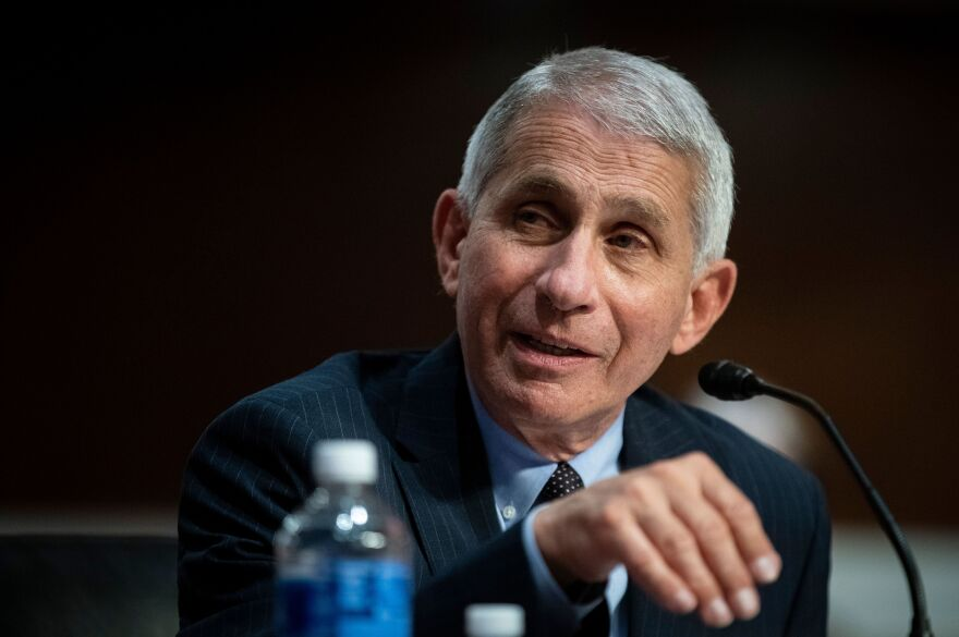 Dr. Anthony Fauci, director of the National Institute of Allergy and Infectious Diseases, has testified before Congress on the spread of the coronavirus. Reports that his relationship with President Trump had soured first surfaced in April.