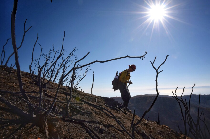 Santa Barbara County Fire Capt. Ryan Thomas hikes down steep terrain rendered barren by the Thomas Fire last month. Authorities announced Friday they had reached 100 percent containment of the fire, which is the largest in modern California history.