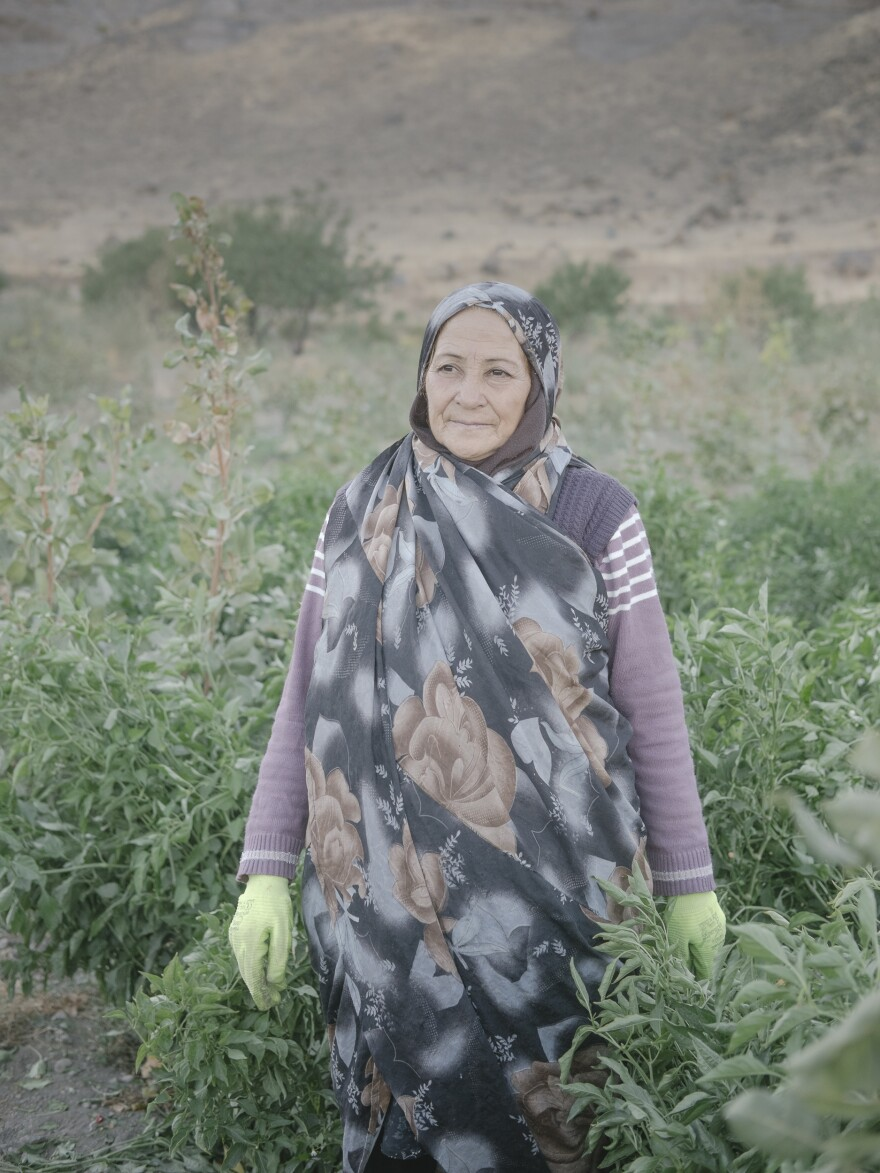 Beygum and her husband own a field by the lake near Gepqchaq. They grow watermelons and chiles, among other crops. Salt blown from the lake makes the ground saltier each year, she told Mann, making plants more difficult to grow.
