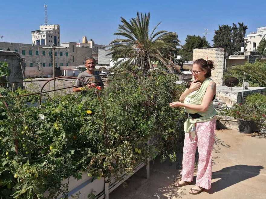 Morgan Cooper holds Lourice a week after she was born, as she and her husband Saleh Totah (left) tend to the rooftop organic garden of their cafe in the West Bank city of Ramallah.