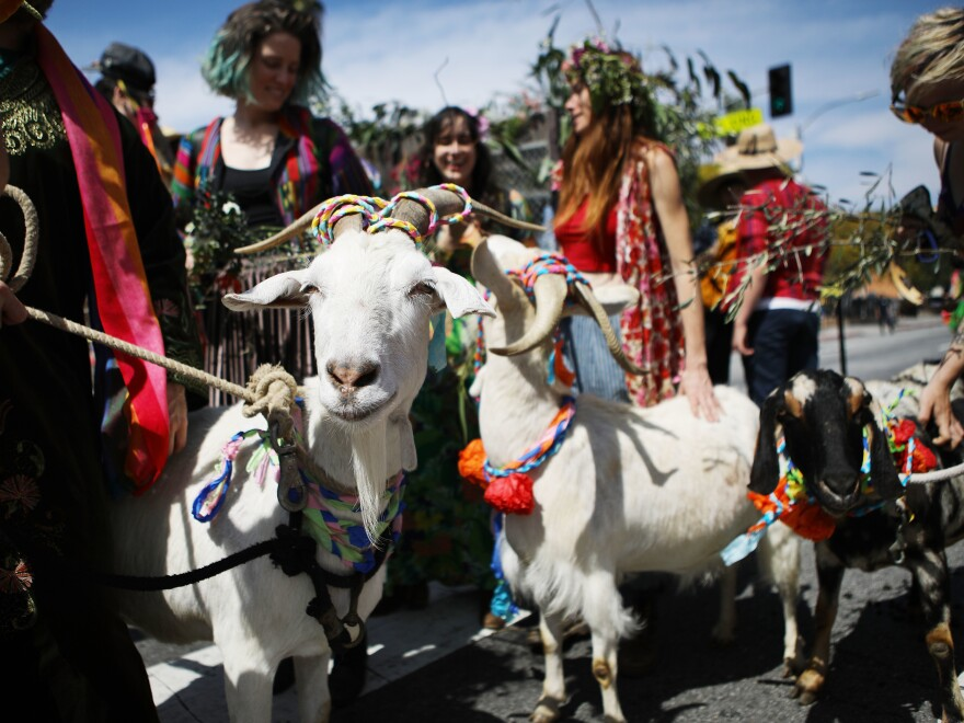 People and pets in Los Angeles gather for the annual Blessing of the Animals ceremony, presided over by Archbishop Jose H. Gomez. The tradition began in 1930 and is normally held the day before Easter.
