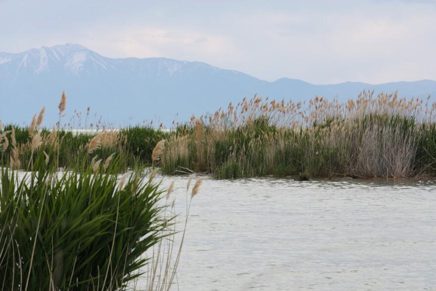 Utah Lake from Saratoga Springs.