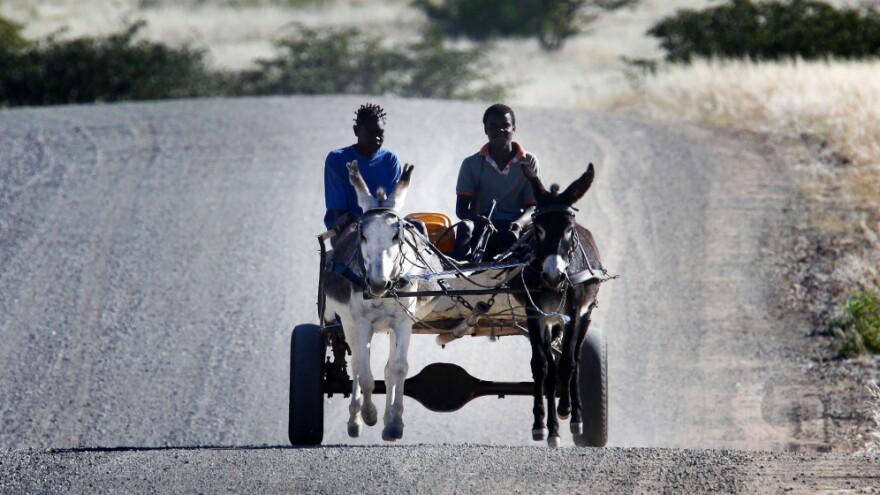 Rural conservancy residents rely on donkey carts to move materials around the vast expanses of northwest Namibia.