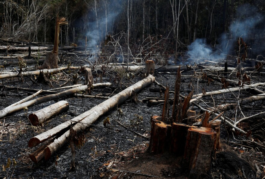 A tract of Amazon jungle being cleared by loggers and farmers burns in Novo Airao, Brazil, on Wednesday.