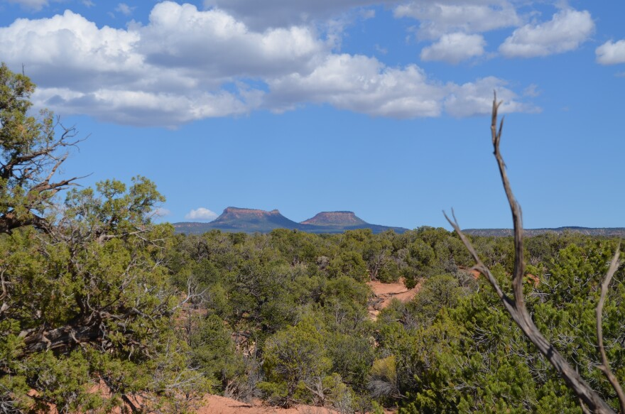 Photo of Bears Ears Buttes.