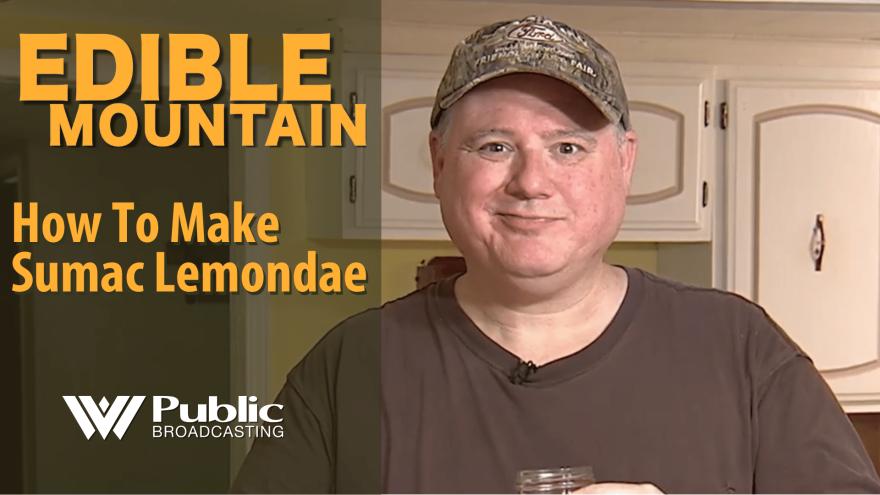 Edible Mountain -  How to Make Sumac Lemonade