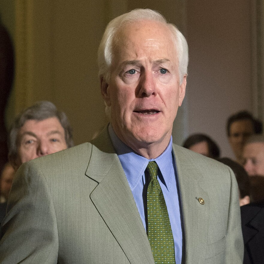 """The whole idea of a young man dying in police custody, the confrontations with police, the looting and burning of innocent minority owned businesses,"" Texas Republican Sen. John Cornyn said on the Senate floor this month. ""The question arises, what can we do?"""