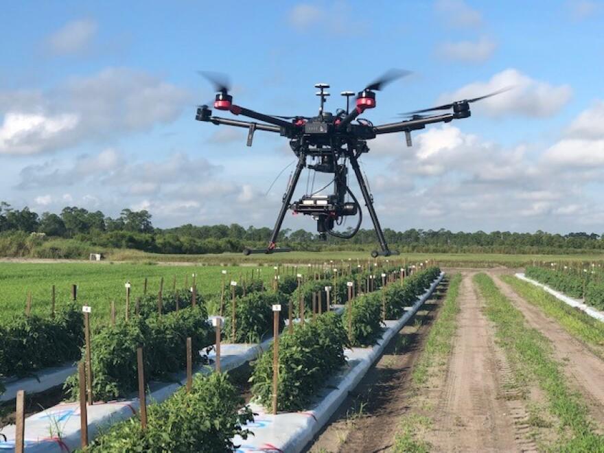 drone_in_field_horizontal.jpg