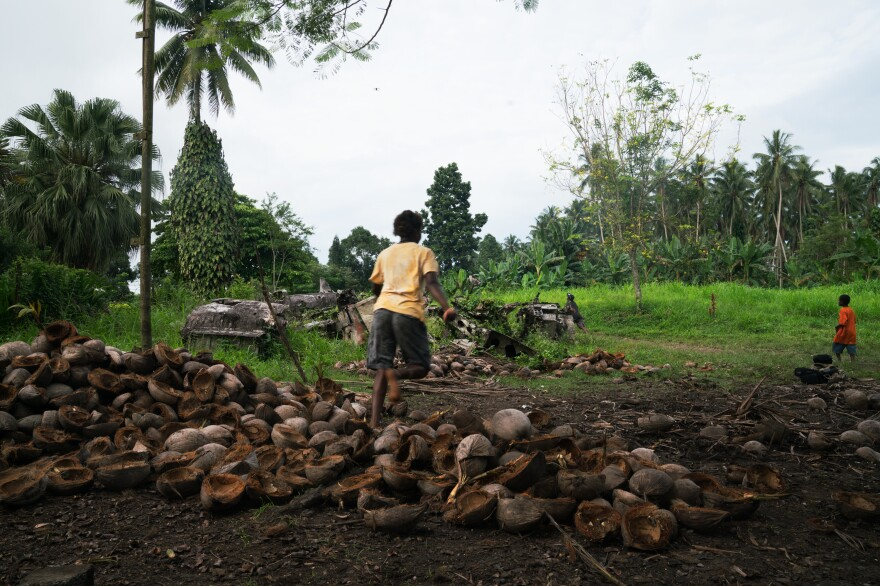 Children play on a coconut plantation on New Britain island, where piles of aviation wreckage from World War II lie in the open.
