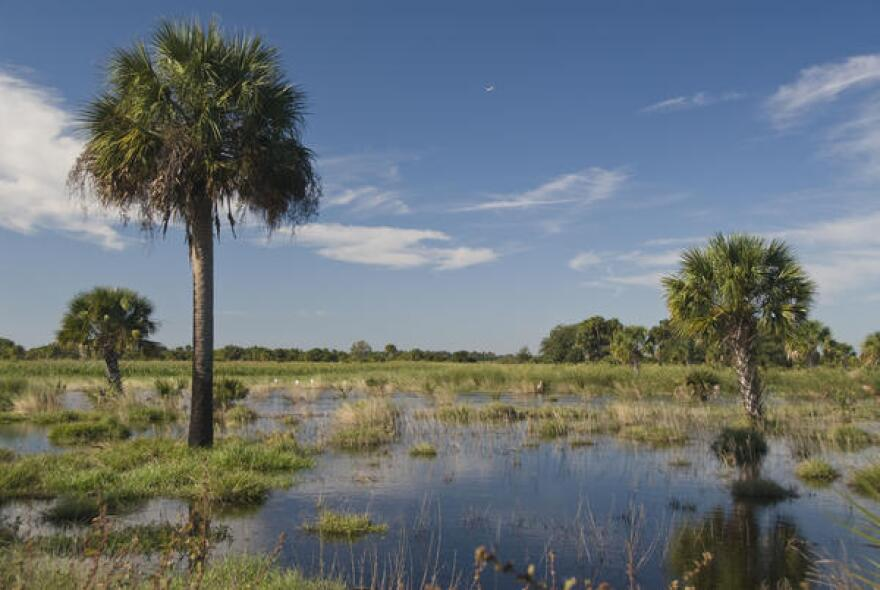The Florida Department of Economic Opportunity did not approve the development plan because it could interfere with restoration efforts aimed at moving water south from Lake Okeechobee (pictured).