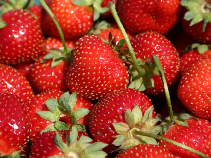 Oregon health authorities quickly traced an August outbreak of foodborne illness to a strawberry field in the state. But will they be so swift next time?