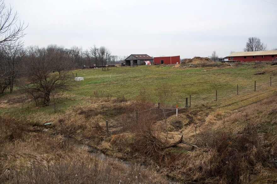 Sara Creech used her savings account and support from her family to buy a foreclosed farmhouse in rural Indiana. This year, thanks to changes in the latest Farm Bill,<strong> </strong>Creech received $21,000 from the USDA — money she is putting back into her farm.