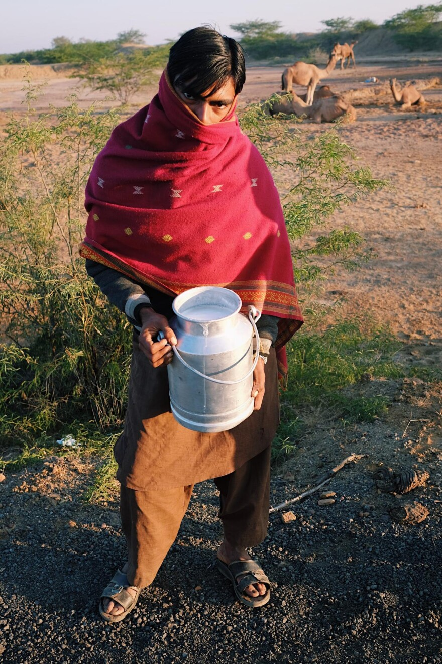 Jat Saleh Amir, 18, a Maldhari herder with fresh camel milk in front of his herd in Kutch, Gujarat.