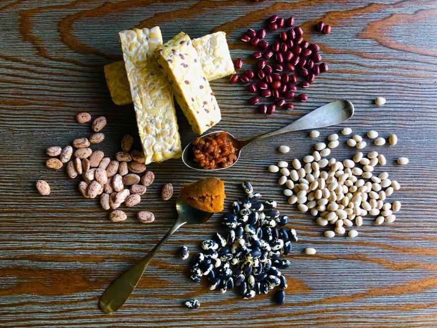 fermentation_beans.jpg
