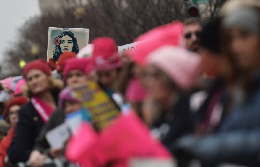 Demonstrators protest on the National Mall in Washington, DC, during the Women's March.