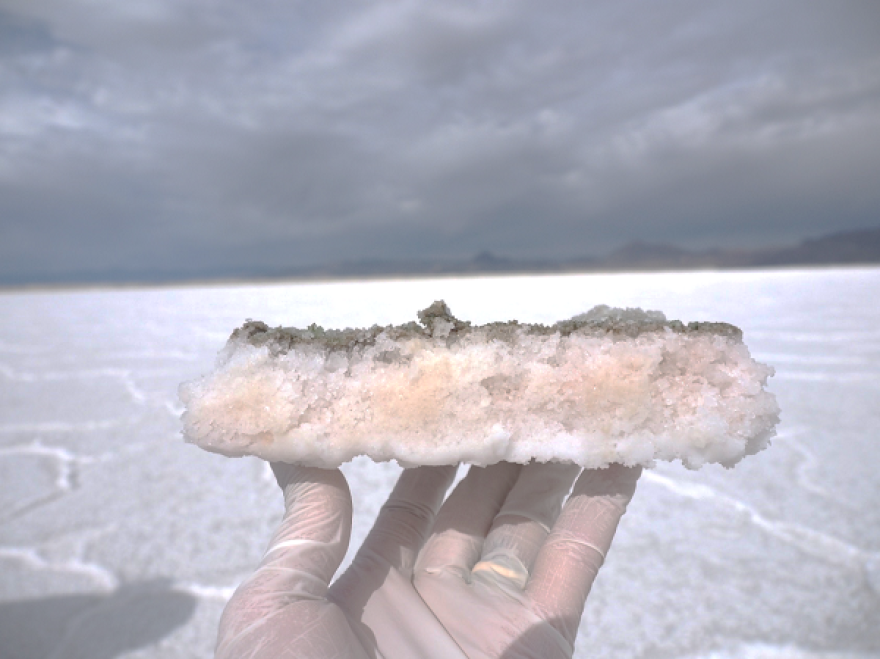 Hand holding chunk of desert salt with pink layer.