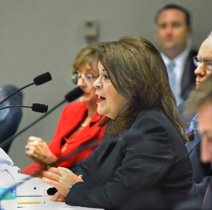 State Rep. Colleen Burton, R-Lakeland, is sponsoring a wide-ranging abortion bill.