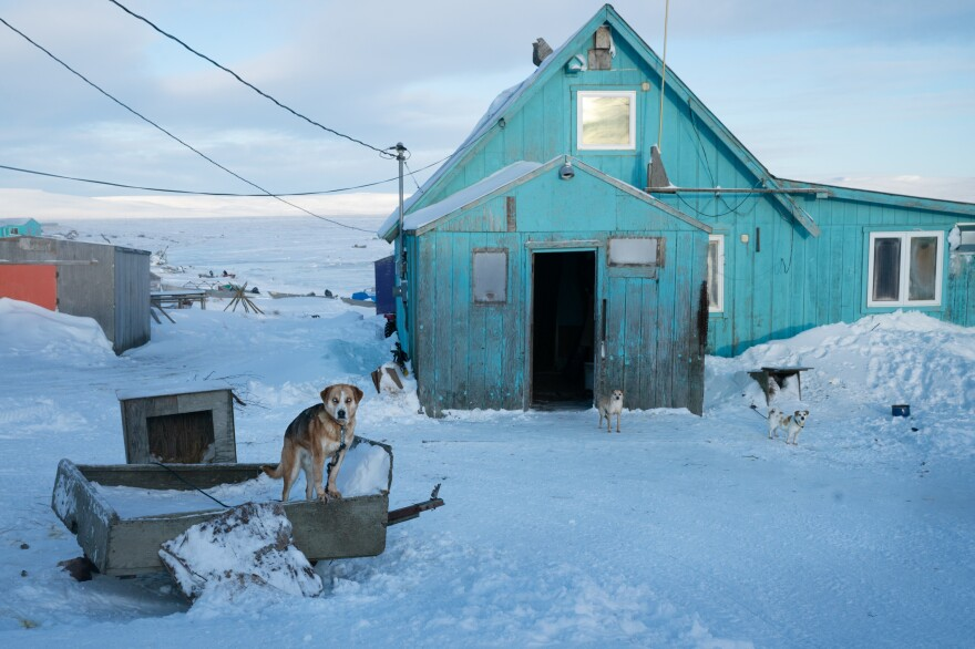 Older residents still remember when they moved their homes, pulled by dog sled, from neighboring Nightmute, Alaska, to make what was once a fishing camp into a permanent settlement. Now dogs abound, but the moving of goods is mainly done with snow machines and all-terrain vehicles<em>.</em>