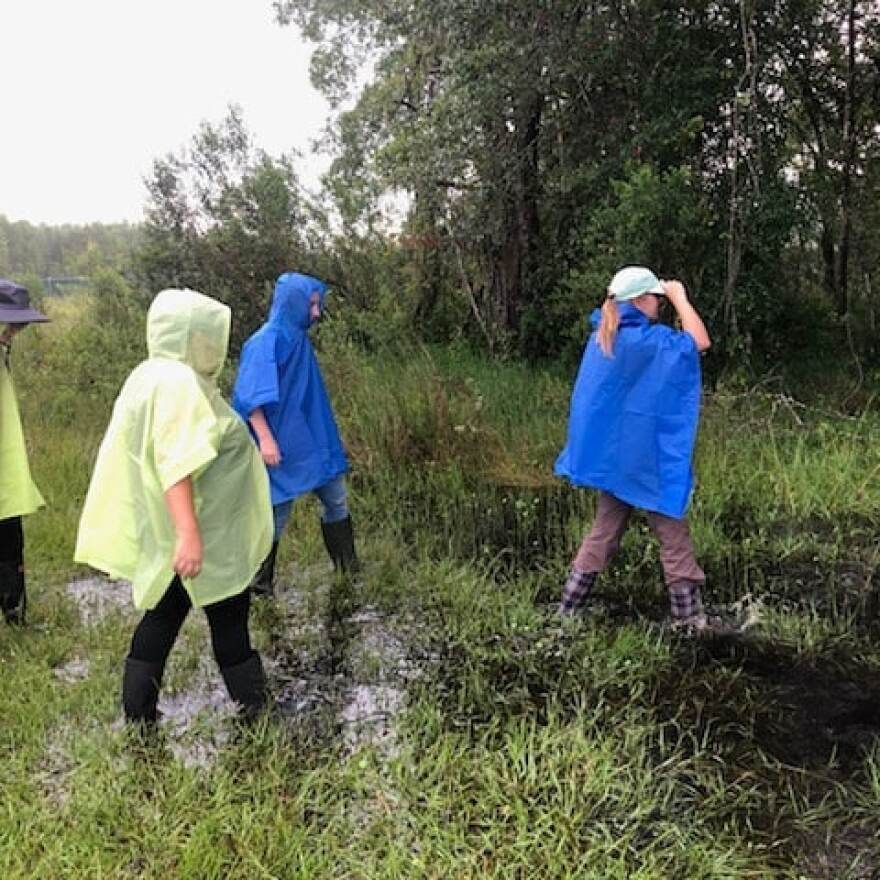 USF forensic anthropology students and researchers trek through the Pasco County facility following heavy rains recently.