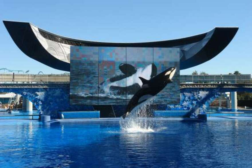 SeaWorld and fomer executives settled a federal fraud claim that they misled investors.