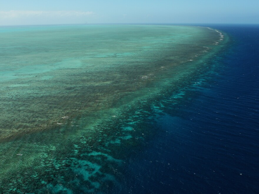 The Great Barrier Reef off the coast of Queensland, Australia, in August 2009. Scientists say they have discovered a second, enormous reef in the deeper water behind the Great Barrier Reef.