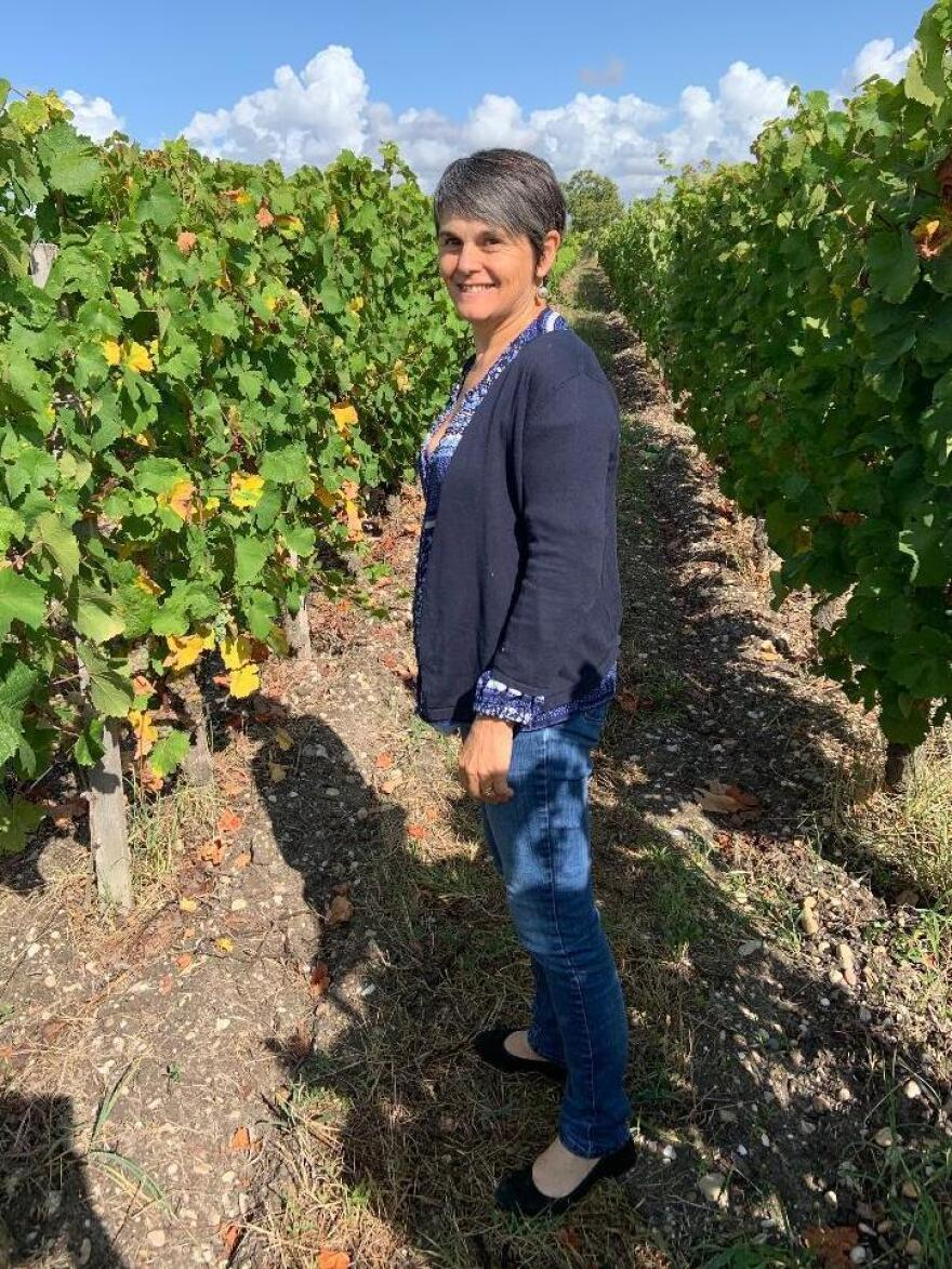 Nathalie Ollat, who heads the Institute of Science for Vine and Wines, says researchers are experimenting with dozens of varieties of more heat-tolerant grapes from southern and eastern Europe.