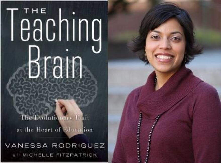 teaching_brain_jpeg.jpg